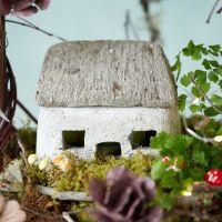 Rock Garden Cottage | Terrain
