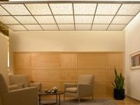 Translucent Ceiling Tiles | Tile Design Ideas