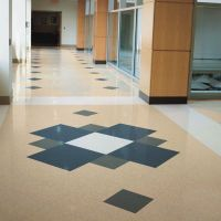 Hematite: 7F52160 | Armstrong Flooring Commercial