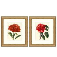 Red Floral Framed Wall Art - Bed Bath & Beyond