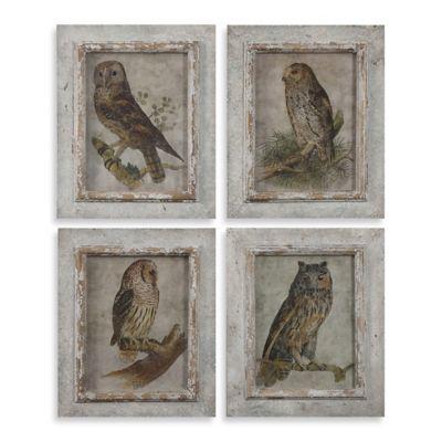 Buy Uttermost Owls Framed Wall Art (Set of 4 Prints) from