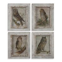 Buy Uttermost Owls Framed Wall Art (Set of 4 Prints) from