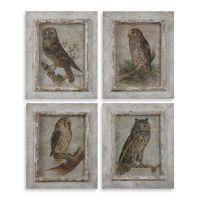 Buy Uttermost Owls Framed Wall Art (Set of 4 Prints) from ...