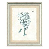 Framed Giclee Teal Seaweed Print II Wall Art - Bed Bath ...