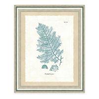 Framed Giclee Teal Seaweed Print III Wall Art - Bed Bath ...