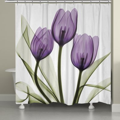 Laural Home Tulips Shower Curtain  Bed Bath  Beyond