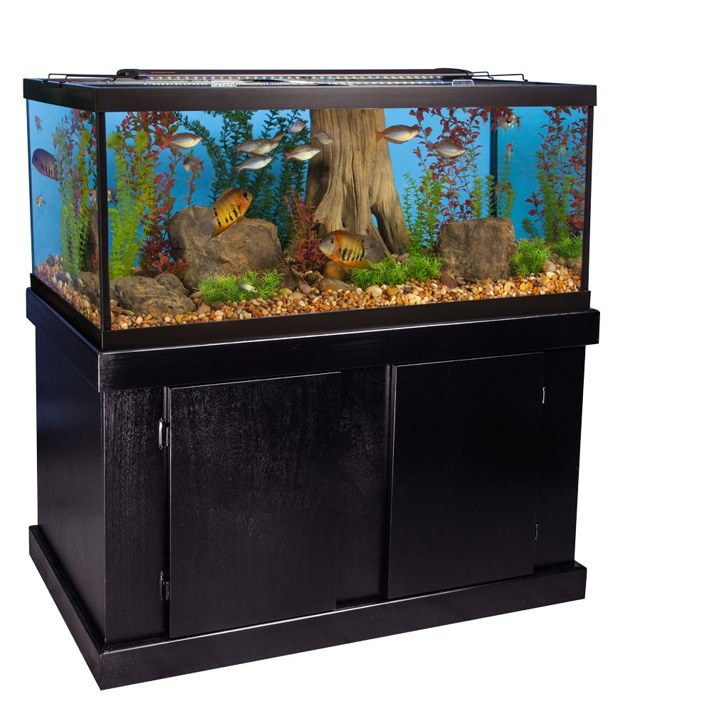 fish tanks aquariums petsmart