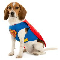 DC Comics Superman Pet Costume | dog Costumes | PetSmart