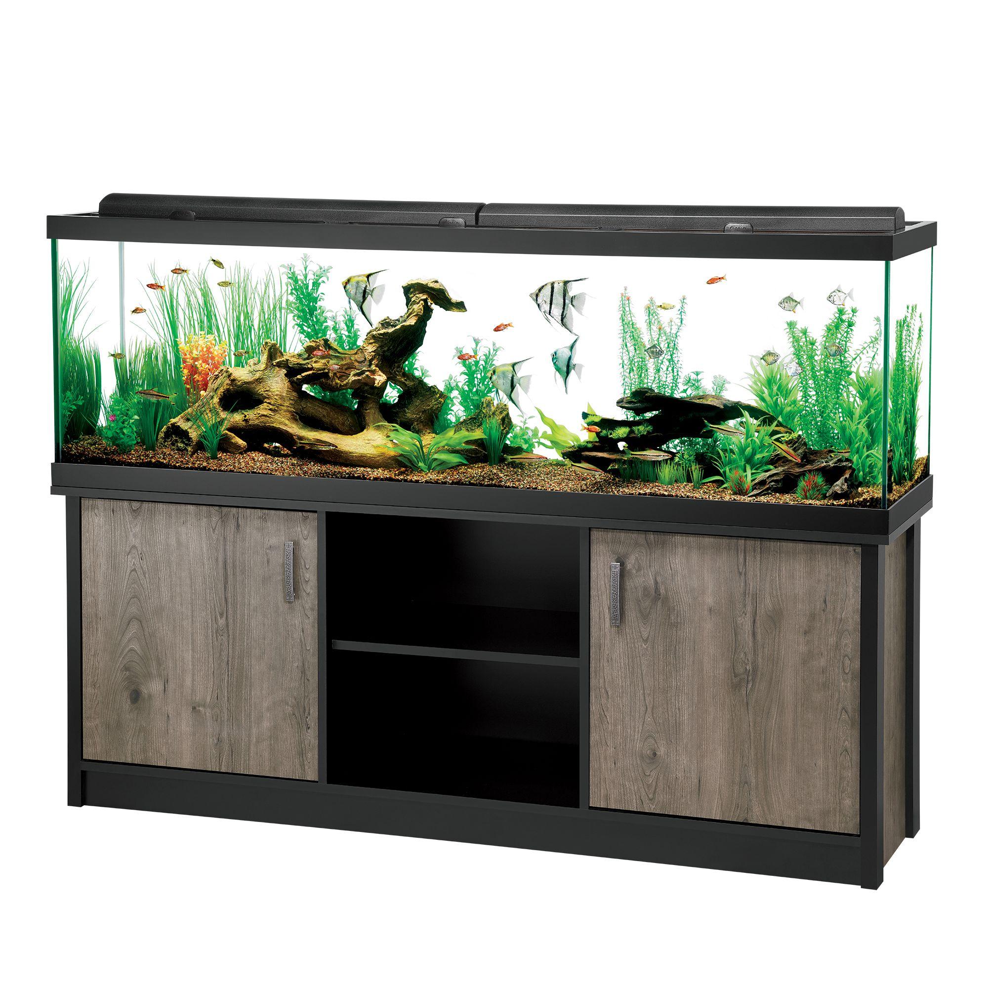 aquariums fish tank supplies