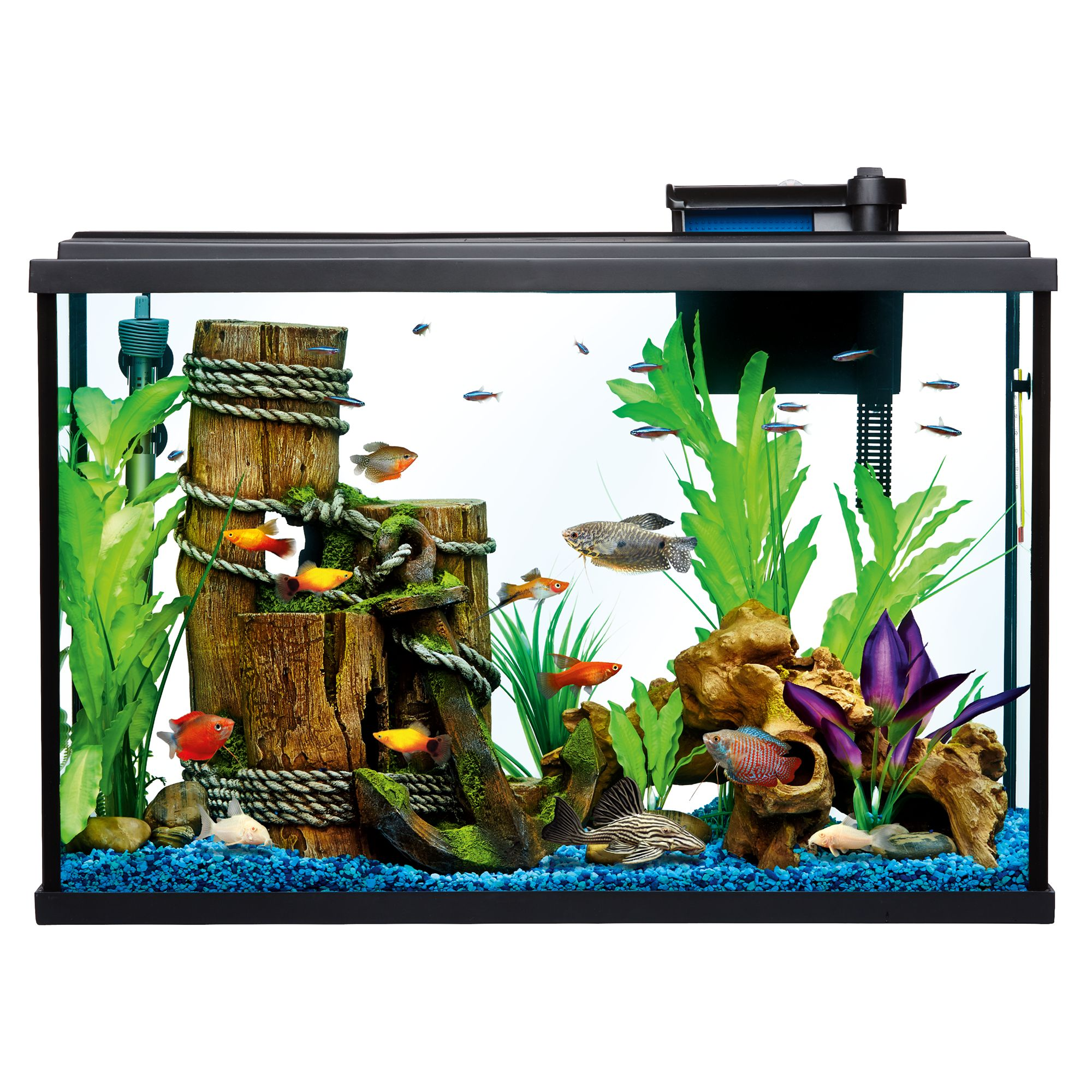 aquariums fish tank supplies