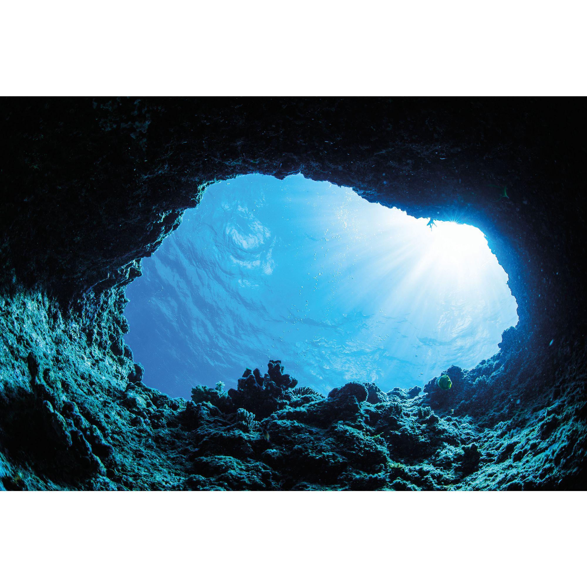 fish tank aquarium backgrounds