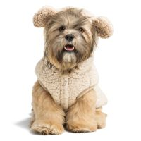 Dog Sweaters: Hoodies, Jackets & Coats for Dogs