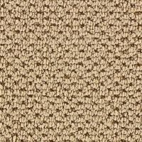 Martha Stewart Living Mount Vernon Brown Alpaca Carpet