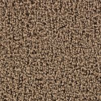 Martha Stewart Living Balmoral Ganache Carpet - Per Sq. Ft ...