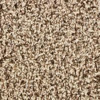home depot carpet - 28 images - carpet carpet carpet tile ...