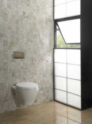 Aquia Wall-hung Dual-flush Toilet 1.6 Gpf & 0.9 Gpf