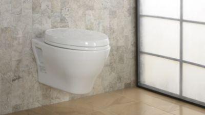 Wall Hung Dual Flush Toilet