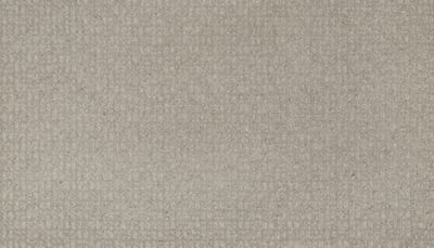 Mohawk Industries Flawless Vision Evening Charm Carpet