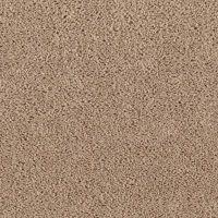 Neutral Ground Brown Sugar - Mohawk Carpet - Rite Rug