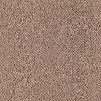 Neutral Ground Woodland - Mohawk Carpet - Rite Rug
