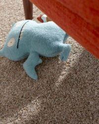 Forever Fresh Carpet, Pet Odor Resistant Carpet, PET ...