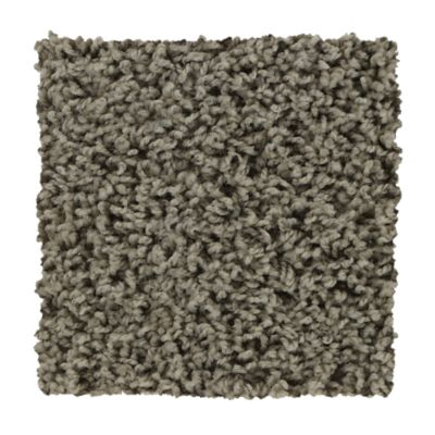 Jeter's carpet & flooring in richmond has a top selection of mohawk industries carpet, including sincere tones greige tint in 12'' Mohawk Industries True Honor Perfect Greige Carpet