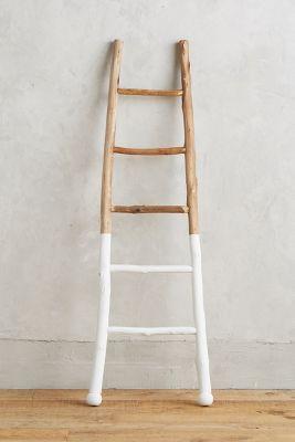 white dipped ladder