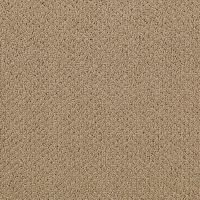 Carpet - Carpeting - Loop - Berber - Pattern - Texture ...