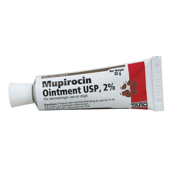 Mupirocin Ointment 2 Percent 22gm - 1800PetSupplies.com