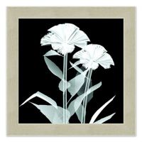 Buy Daffodil X-Ray Flower Wall Art from Bed Bath & Beyond