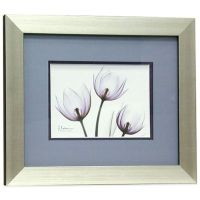Buy X-Ray Blackberry Floral 11-Inch x 13-Inch Wall Art ...