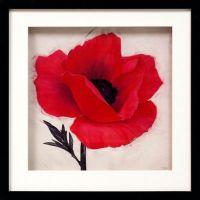 Jubilee Poppy Flower Framed Wall Art - Bed Bath & Beyond
