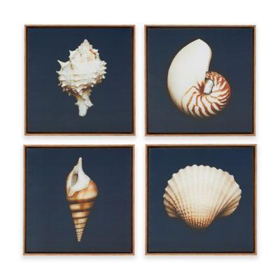 Madison Park Ocean Seashells 4 Piece Framed Canvas Wall