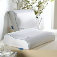 Isotonic Iso Cool Memory Foam Contour Pillow