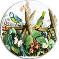Design Art Colorful Birds Sitting on Branches DiscAnimal ...