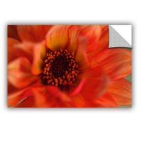 Brushstone Fiery Dahlia Removable Wall Decal - JCPenney