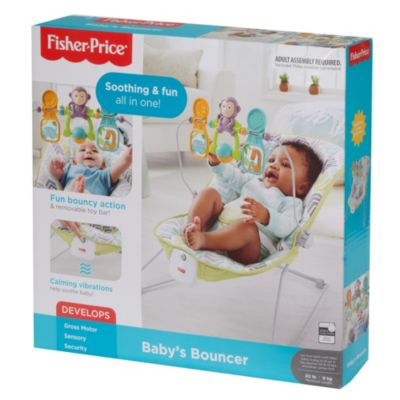 Fisher Price Baby Chair Baby S Bouncer