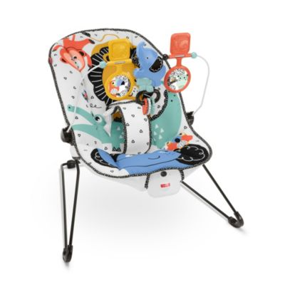Fisher Price Baby Chair Fisher Price Baby S Bouncer