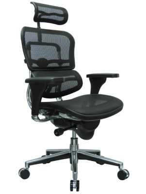 ergonomic chair description death row records electric ergohuman mesh high back w headrest officechairs com img