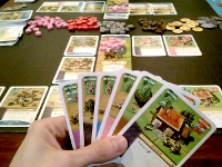 Play 2014-Jan-19 - Imperial Settlers
