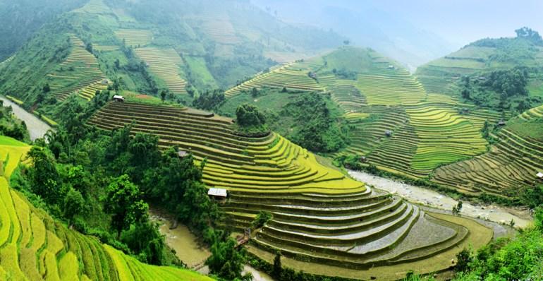 Bali Paddy Hills
