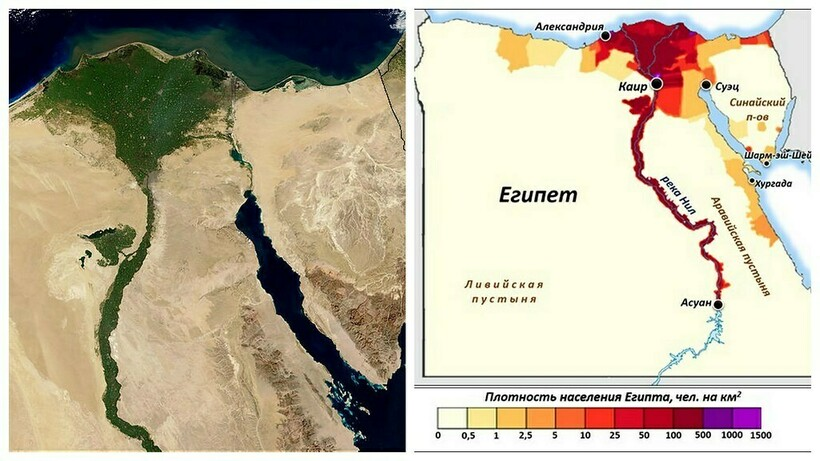 Gęstość populacji Egiptu