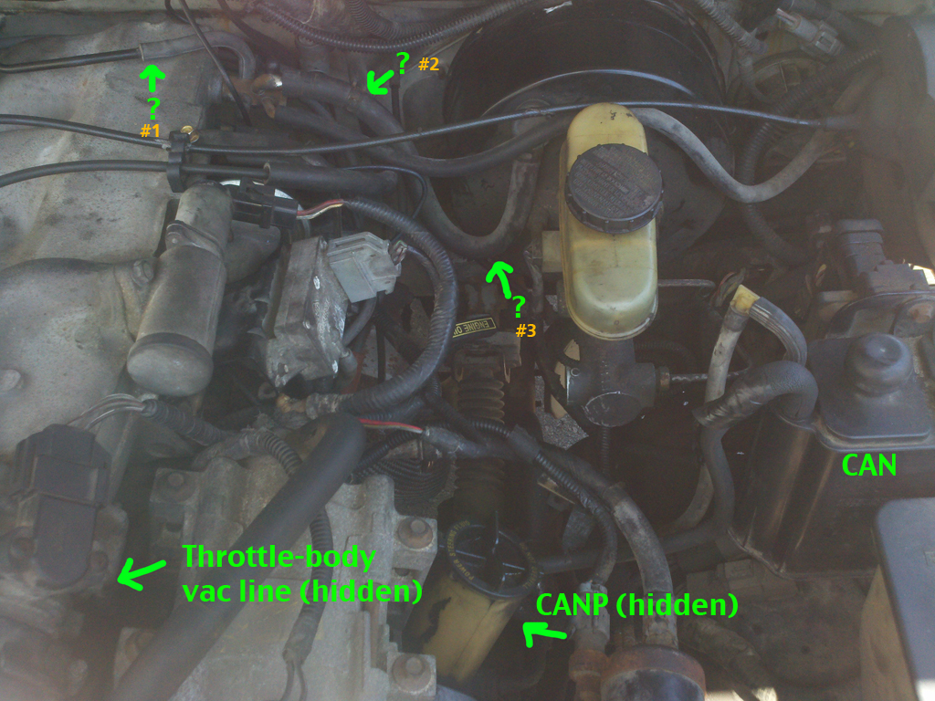 Ford Explorer Engine Diagram On 93 Ford Ranger 4 0 Egr Valve Location