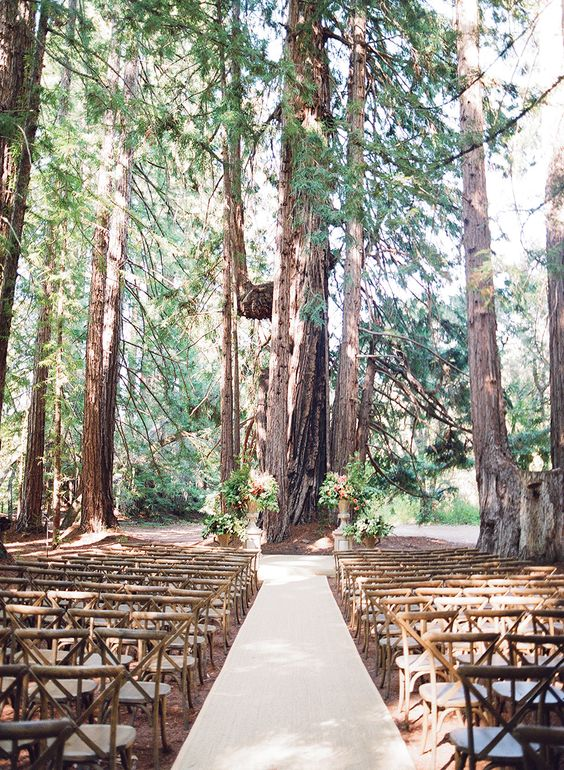 chiavari rental chairs folding chair drawing bella amore on enchanted acres - dennison ohio rustic wedding guide