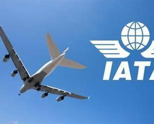 """الاتحاد الدولي للنقل الجوي يعلن رسمياً """"نيوم"""" مطاراً تجارياً"""