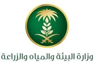 «ريف» الإلكترونية تدعم المزارعين … بمبالغ مالية !!