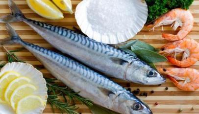 الماكولات البحرية ضرورة حتمية لكبار السن