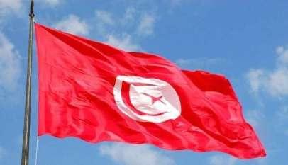 تونس تعلن استضافة أمم أفريقيا لليد والطائرة 1