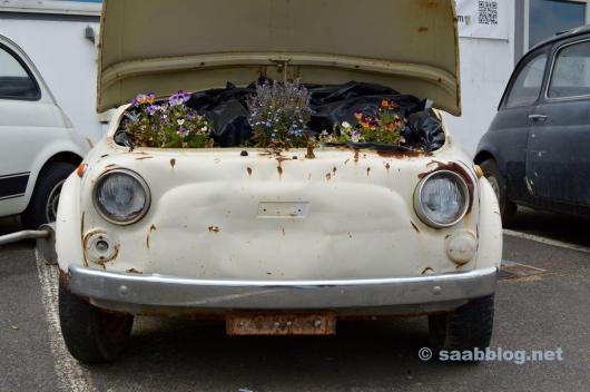 Biotop - oder Auto?
