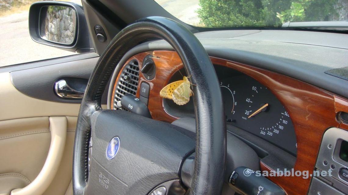 Saab Summertime - Impression